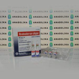 Verpackung Testosteron Depo (Testosteron Enanthat) 250 mg Galenika