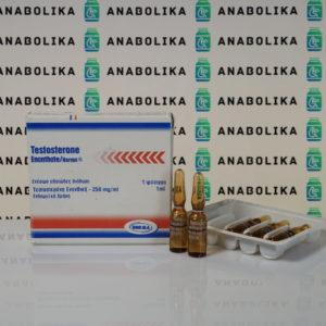 Verpackung Testosterone Enanthate 250 mg Norma Hellas
